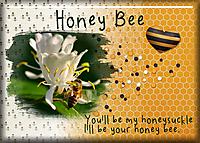 ATC-2018-034-Honey-Bee.jpg