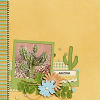 Arizona-1_web.jpg