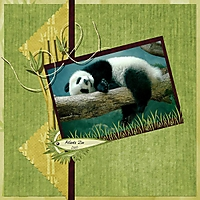 Atlanta_Zoo_small.jpg