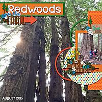 August-Redwoods1WEB.jpg
