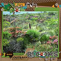 Australia-rejoices-when-the-outback-blooms-megscZoobileeOutback.jpg