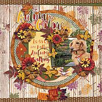 AutumnColors1.jpg