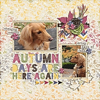 AutumnDaysAreHereAgain.jpg