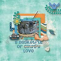 Basket_600_x_600_.jpg