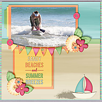 Beach-WEB.jpg
