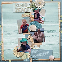 Beach_NS_AimeeH_KuhioBeachWEB.jpg