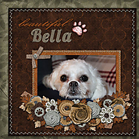 Beautiful_Bella.jpg