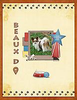 Beaux-D-3-11-17.jpg