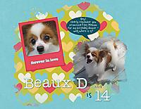 Beaux-D-is-14.jpg