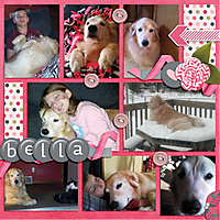 Bella2.jpg