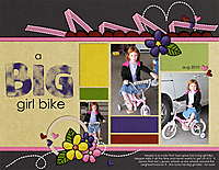 BigGirlBike_Aug10_web.jpg