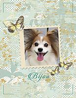 Bijou-12-03-16.jpg