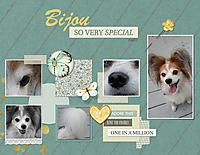 Bijou-So-Very-Special.jpg