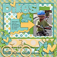 Bikes_led_fyib_rfw.jpg