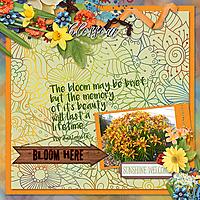 Bloom-Here.jpg