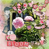 Bloom12.jpg