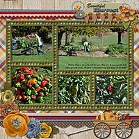 Bountiful_Harvest.jpg