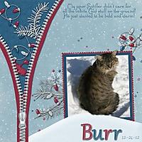 BurrKitty.jpg