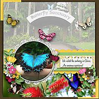 Butterfly_Sanctuary.jpg