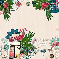 CD_FreshAir_BlossomKCB.jpg