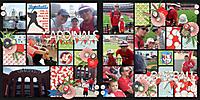 Cardinals_Baseball_Double.jpg