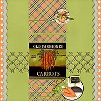 Carrot-Patch.jpg