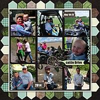 Cattle-Drive-2014-pg-2-med.jpg