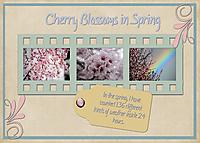 Cherry-Blossoms-in-Spring.jpg