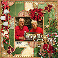 Christmas_2015_sherwood_rfw.jpg