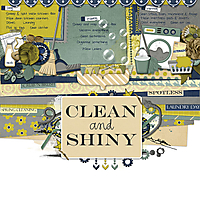 Clean_Shiny2012.jpg
