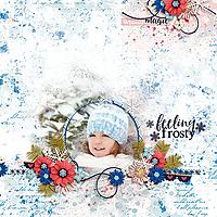DSI-feeling-frosty-21Jan.jpg