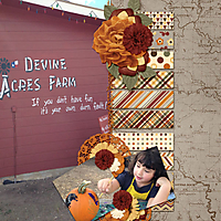 Devine_Acres_Fun_edited-1.jpg