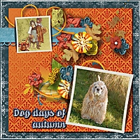 Dog_days_of_autumn.jpg