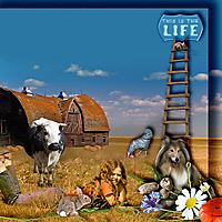 Farm-Life.jpg