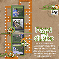 Feed-the-DucksWEB.jpg