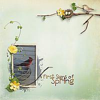 First-spring-robin-041718.jpg