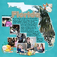 Florida_Plane_Trip.jpg