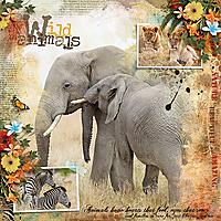 GTD-wild-animals-1July.jpg