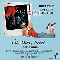Get-a-Dog.jpg