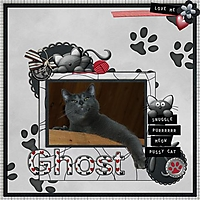 Ghost_copy_Small_.jpg