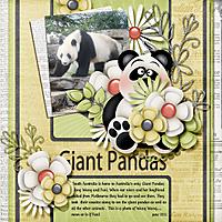 Giant-Pandas.jpg