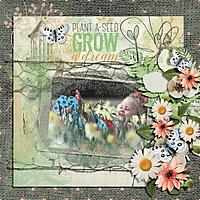 Grow_a_Dream.jpg
