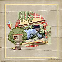Gus-Up-in-a-tree.jpg