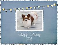 Happy-Birthday-Beaux-D-3-11-17.jpg
