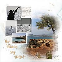 Hawaii_Album_05Sm.jpg