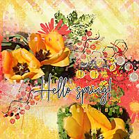 Hello-spring6.jpg