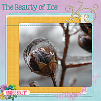 Ice_2005.jpg