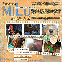 Introducing-milo-copy.jpg