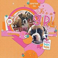 It_s-a-GirlWEB.jpg