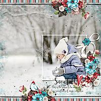 JSD-HSA-Snowfall-24Nov.jpg